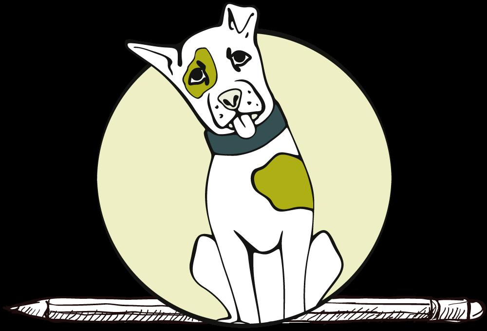 Spiegelhund-Erziehung