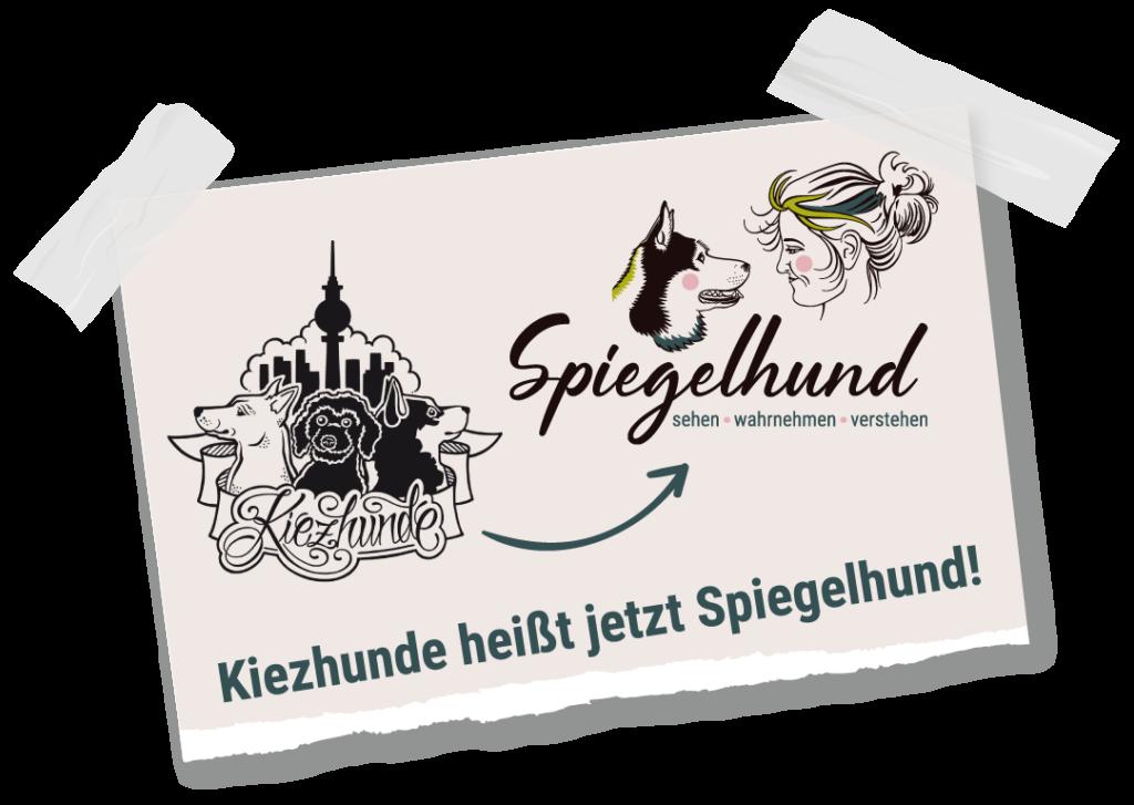 Kiezhunde-Spiegelhund-Ankundigung