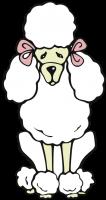 Spiegelhund-Naturheilkunde