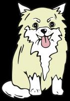 Spiegelhund-TToch